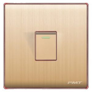 PMT 1 GANG 2 Way SWITCH Gold